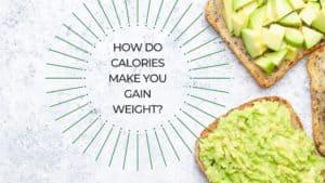 How do calories make you gain weight_ (1)